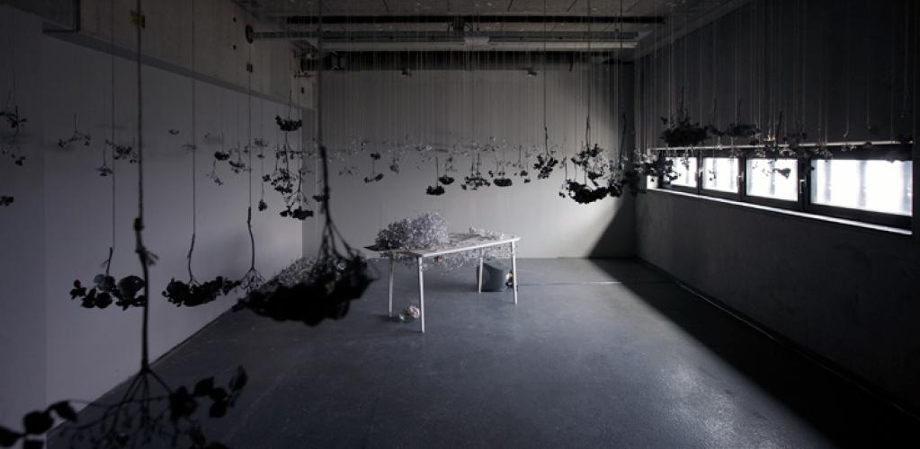 http://www.yukarimatsumoto.nl/files/gimgs/th-39_Flowers_C_GJ_vanROOIJ.jpg