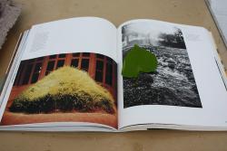 http://www.yukarimatsumoto.nl/files/gimgs/th-58_Linde_HansHaacke_v2.jpg