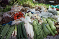 https://www.yukarimatsumoto.nl:443/files/gimgs/th-35_China-vegetables.jpg