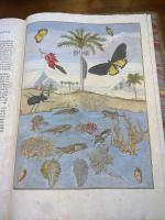 https://www.yukarimatsumoto.nl:443/files/gimgs/th-35_Natural-library01.jpg