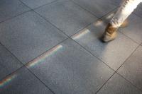 https://www.yukarimatsumoto.nl:443/files/gimgs/th-35_Street-rainbow_s.jpg